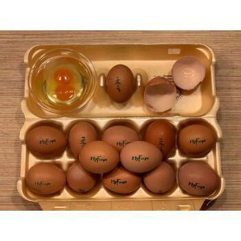 Boldog tojás 50 db