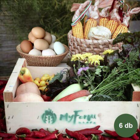 Havi zöldség + tojás kosár - Harta